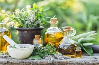 мокрица трава лечебные свойства для суставов