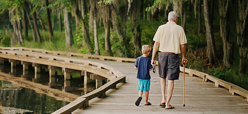 как правильно выбрать трость для ходьбы